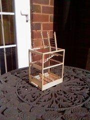 Aviary Trap Cage (single)