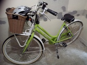 Ladies 5 Speed BSP XRay Bicycle for Sale